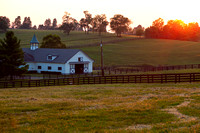 Horse Farm Sunset